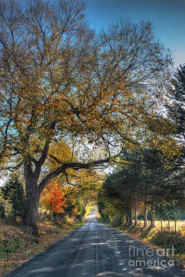 Down A Berger Lane Original