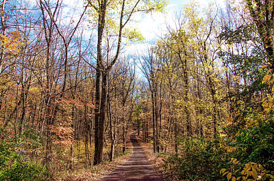 Down A Dirt Road In Autumn Art Print by Bill Cannon
