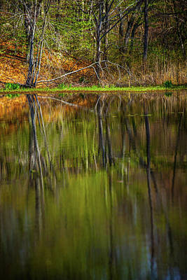 Photograph - Down At Pecks Pond by Karol Livote