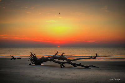 Photograph - Down But Not Out Driftwood Beach Jekyll Island Georgia Art by Reid Callaway