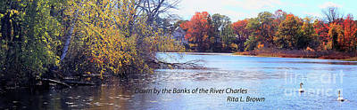 Photograph - Down By The Banks Of The River Charles by Rita Brown