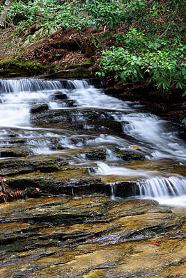 Photograph - Down By The Creek by Michael Scott