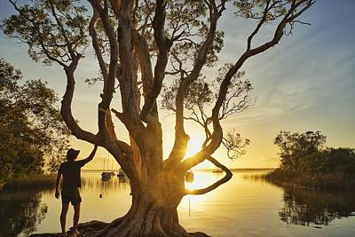 Photograph - Down By The Lake At The Sunrise Tree by Keiran Lusk