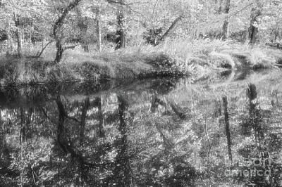 Photograph - Down By The River by Charles Owens