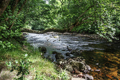 Photograph - Down By The River by Tom Conway