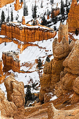 Photograph - Down Into The Canyon by Christopher Holmes