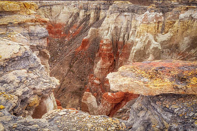 Photograph - Down Into The Canyon by David Cote