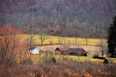 Photograph - Down On The Farm by Jewels Blake Hamrick