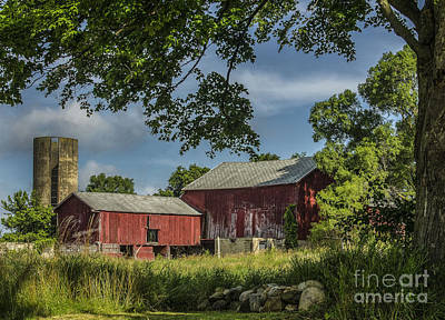 Photograph - Down On The Farm by JRP Photography