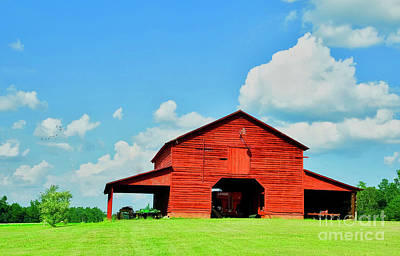 Photograph - Down On The Farm by Kathy Baccari
