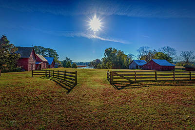 Photograph - Down On The Farm by Pete Federico