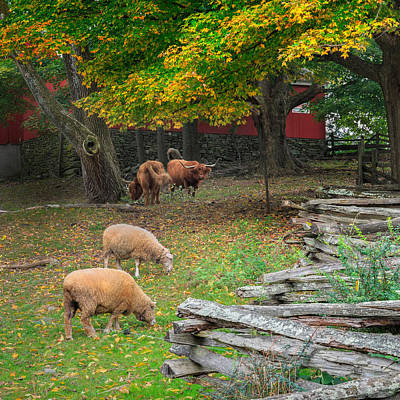 New England Photograph - Down On The Farm Square 2015 by Bill Wakeley