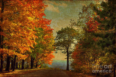 Country Road Digital Art - Down The Mountain by Lois Bryan