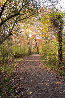 Belmont Lake State Park Wall Art - Photograph - Down The Park Path by Joan D Squared Photography