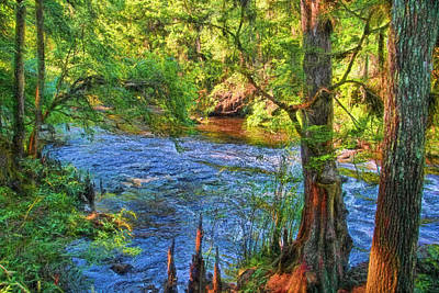 Down To The River Art Print by HH Photography of Florida