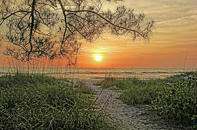 Photograph - Down To The Sea by HH Photography of Florida
