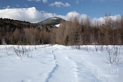 Downes - Oliverian Brook Ski Trail - White Mountains New Hampshire  Art Print