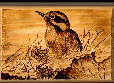 Pyrography Pyrography - Downey In Waiting by Jay Johnston