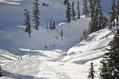Photograph - Downhill Skiers by Clayton Bruster