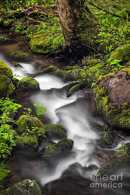 Downstream From The Waterfalls Art Print by Madonna Martin
