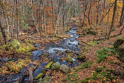 Photograph - Downstream, Goodwins Mills by Gary Shepard