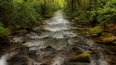 Photograph - Downstream by Sandy Keeton