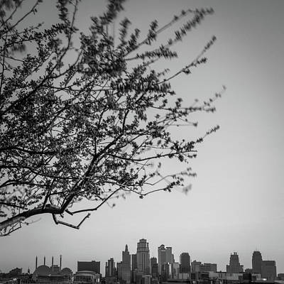 Rowing - Downtown Kansas City Skyline Below Spring Tree - Black and White by Gregory Ballos