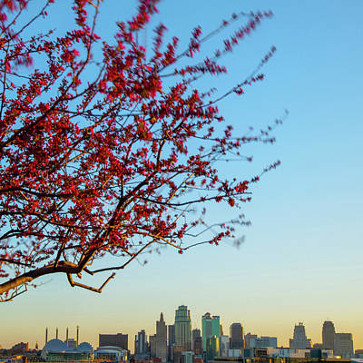 Photograph - Downtown Kansas City Skyline Below Spring Tree by Gregory Ballos