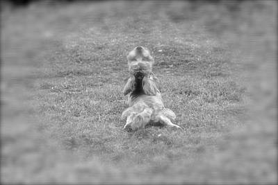 Science Collection - Downward Dog by Nelda Mays