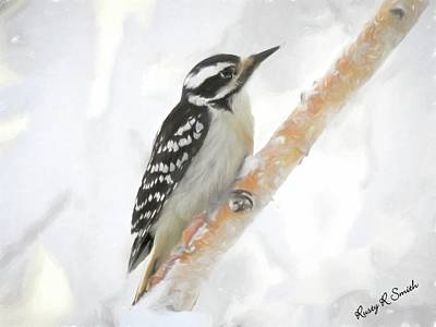 Digital Art - Downy Woodpecker Clinging To A Branch. by Rusty R Smith