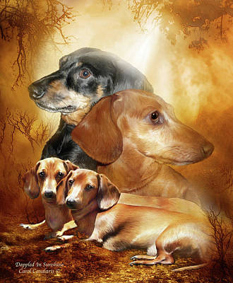 Mixed Media - Doxies - Dappled In Sunshine by Carol Cavalaris