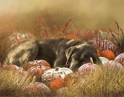 Black Lab Digital Art - Dozing Amidst The Pumpkins by Jan Galland