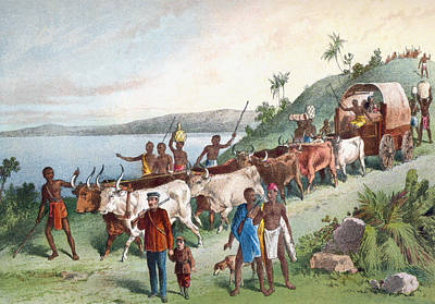Native Drawing - Dr. David Livingstone S Arrival At Lake by Vintage Design Pics