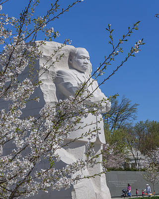 Photograph - Dr. Martin Luther King, Jr. Memorial At Cherry Blossom Time Ds0072 by Gerry Gantt