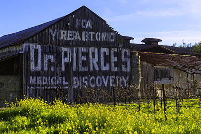 Sonoma County Photograph - Dr Pierces Barn by Garry Gay