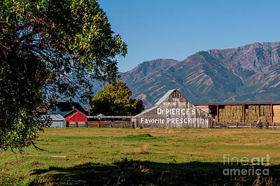 Photograph - Dr Pierces Barn - Logan - Utah by Gary Whitton