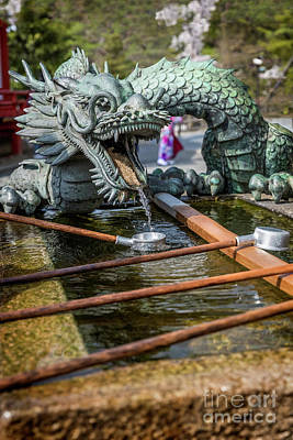Photograph - Dragon And Cup by Karen Jorstad