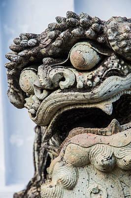 Mosaico Photograph - Dragon by Claudio Sanzo