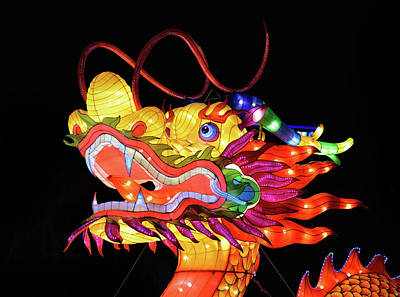 Photograph - Dragon Head Lantern by Vic Harris