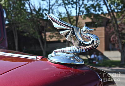 Photograph - Dragon Hood Ornament by Linda Bianic