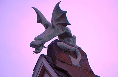 Photograph - Female Dragon by John Parry