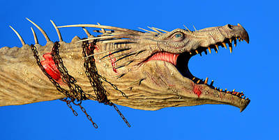 Photograph - Dragon Panoramic by David Lee Thompson