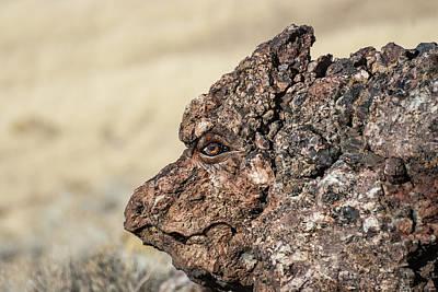 Digital Art - Dragon Rock by Rick Mosher