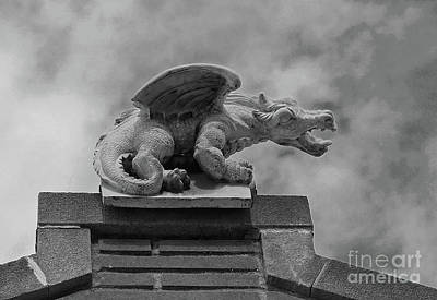 Photograph - Dragon by Traci Law