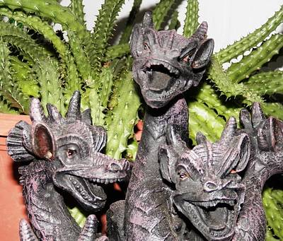 Photograph - Dragon Trio On The Loose by Belinda Lee