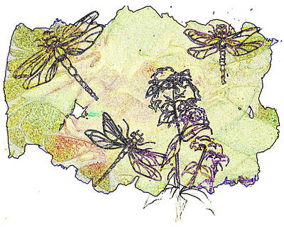 Wildlife Mixed Media - Dragonflies by Anne Rickard
