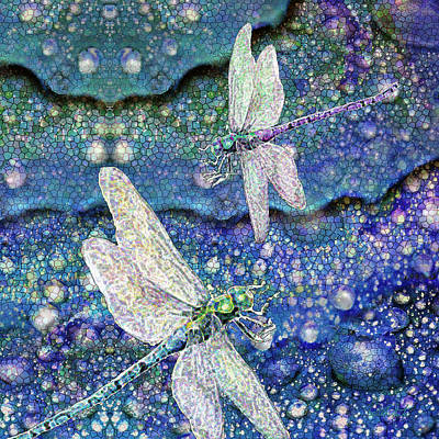 Mixed Media - Dragonflies On Dragon Tears by Michele Avanti