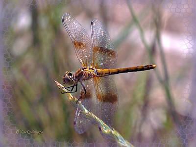 Mixed Media - Dragonfly 2 by Kae Cheatham