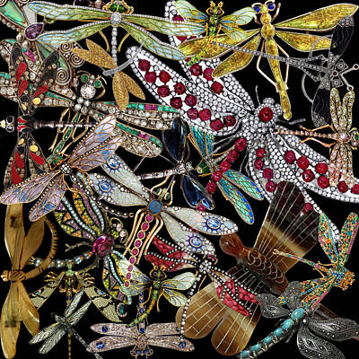 Photograph - Dragonfly by Andrew Fare
