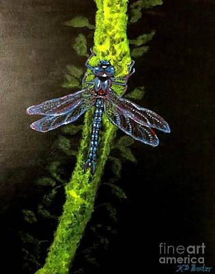 Painting - Dragonfly Drama by Kimberlee Baxter